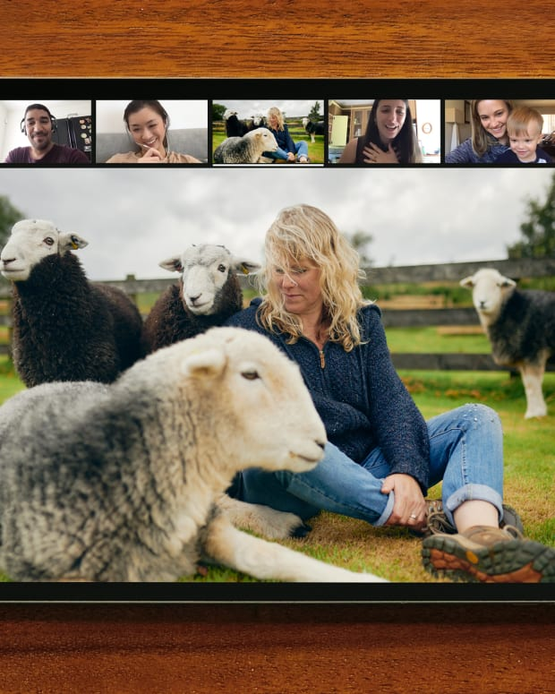 Online_Experience_Guided_Meditation_With_Sleepy_Sheep