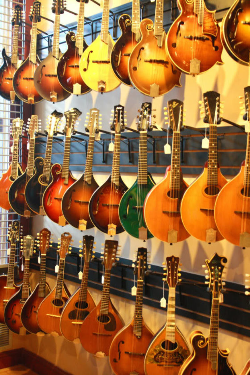 Gruhn Guitars, Nashville, TN