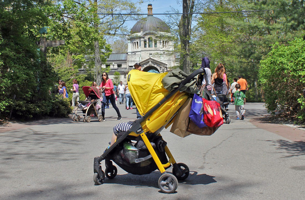 Armadillo-City-Stroller-Review