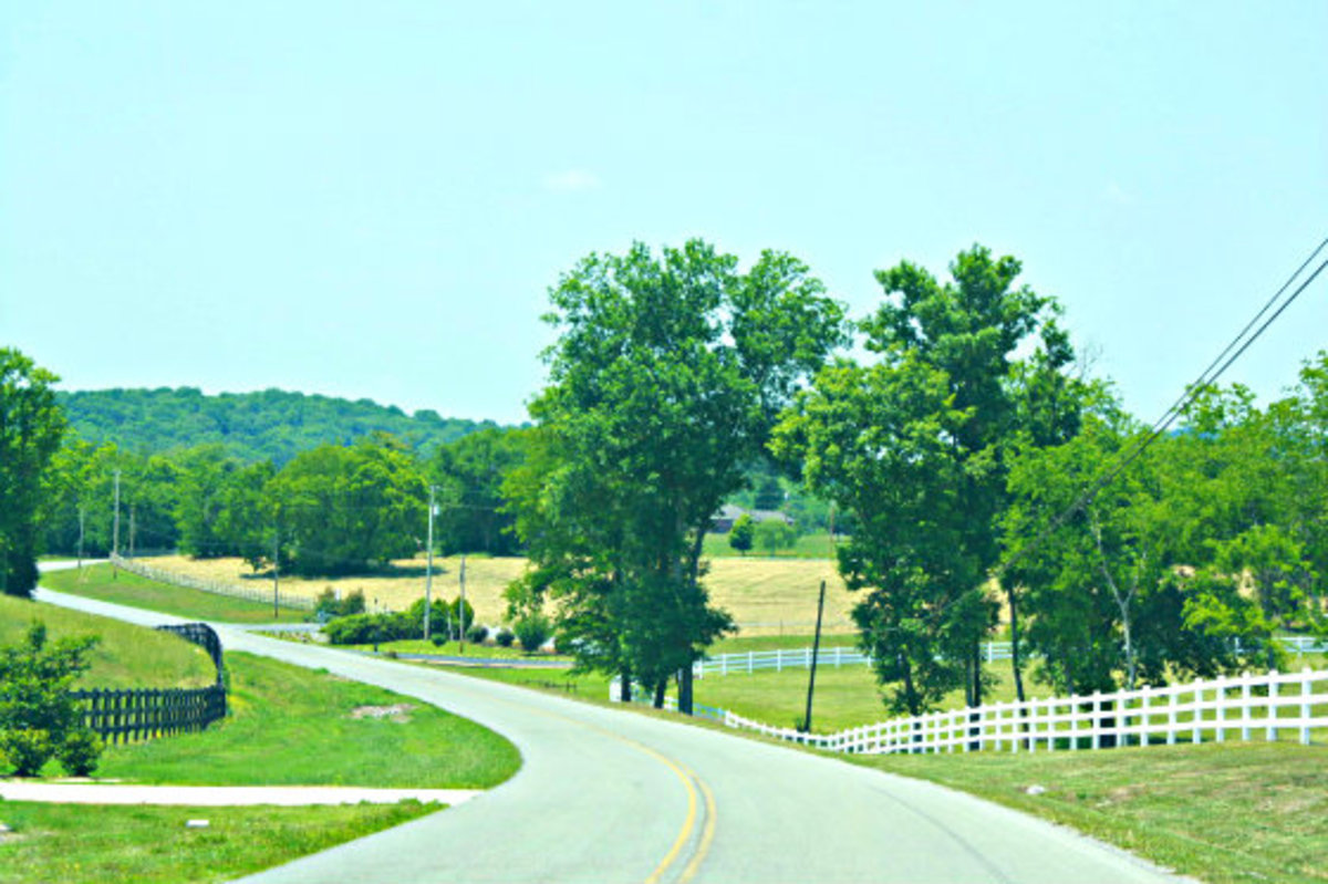 Tennessee Countryside