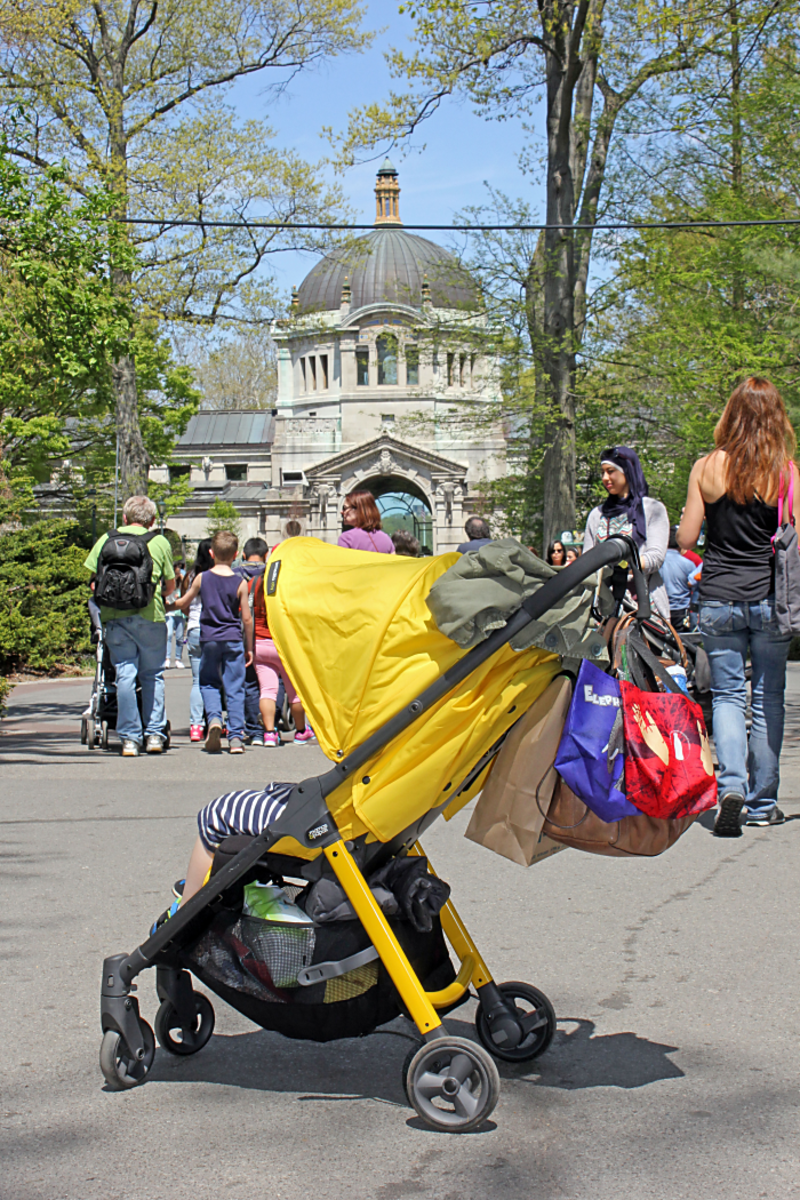 Bronx-Zoo-Stroller_png