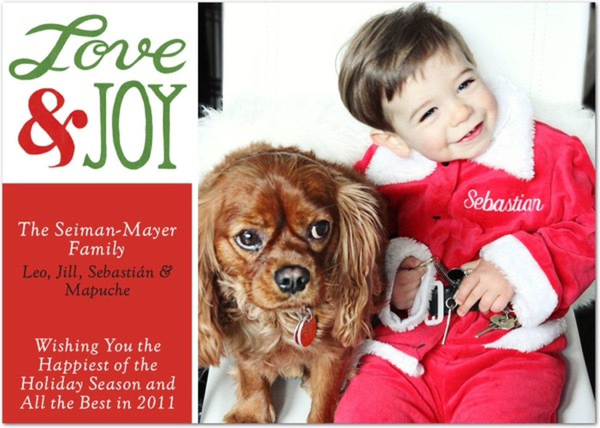 Seiman-Mayer Holiday Card 2010