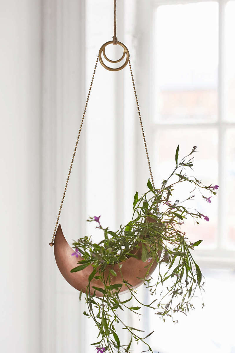 gifts for glam goddesses magical thinking crescent hanging planter
