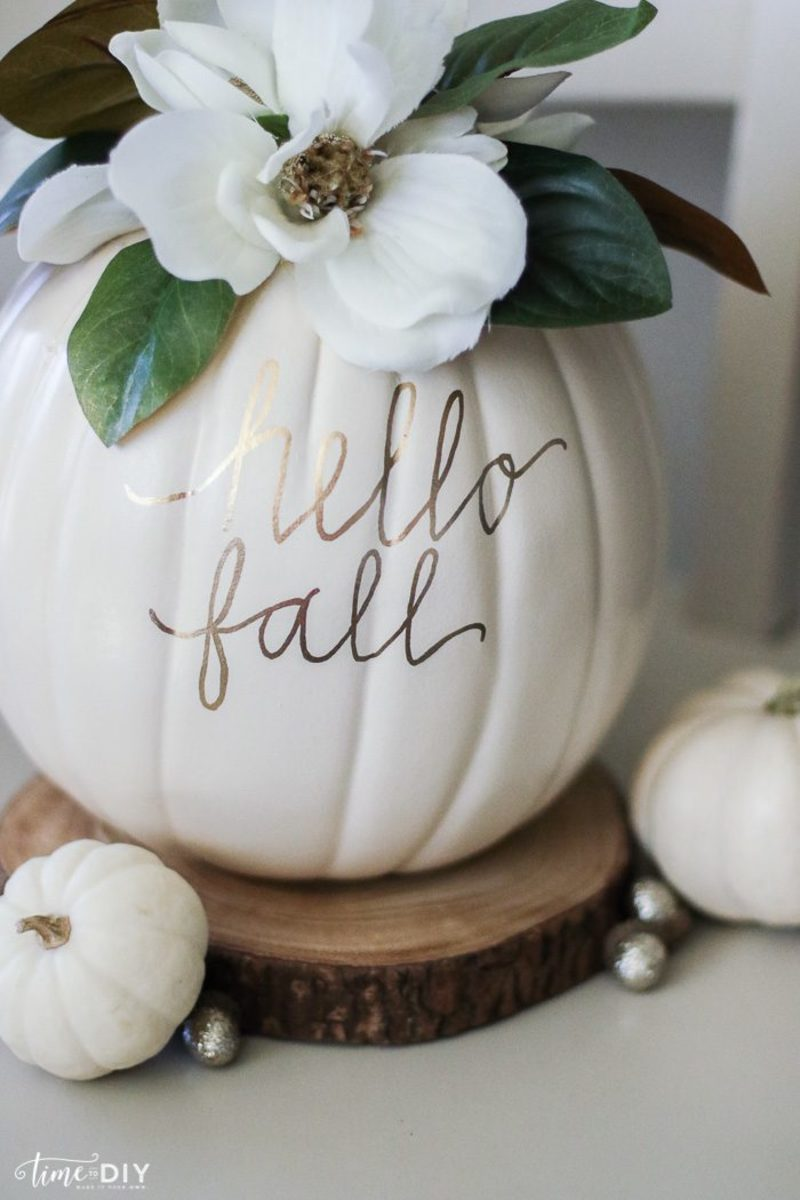 Magnolia Pumpkin from Lolly Jane