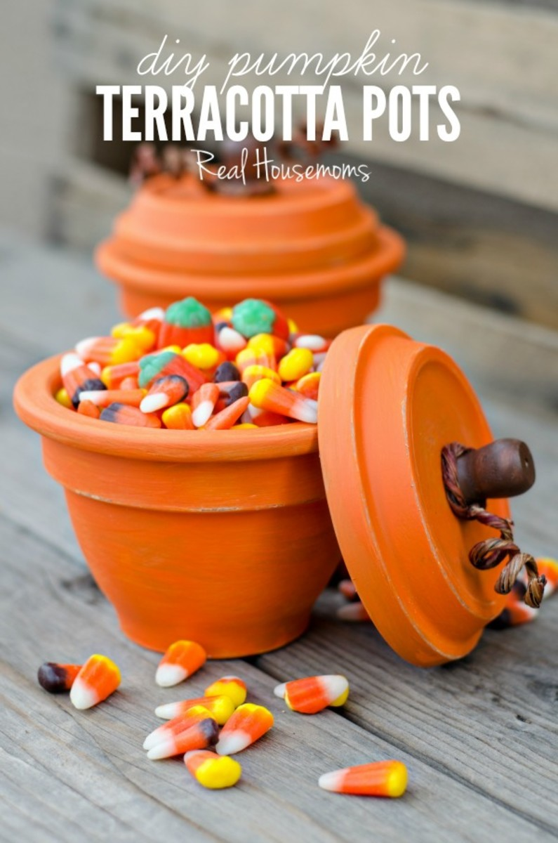 DIY-Pumpkin-Terracotta-Pots-1